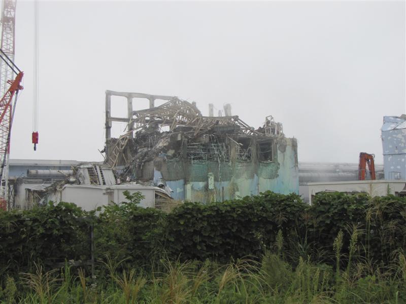 Fukushima Japan Reactor