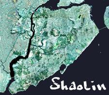 Shaolin - Statin Island