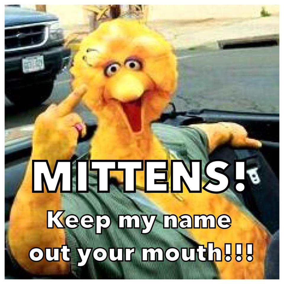 Big Bird has words for Mitt Romney